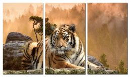 Задумчивый тигр 2