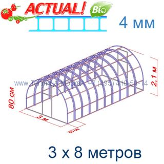 Теплица Богатырь Люкс 3 х 8 с поликарбонатом 4 мм Актуаль BIO