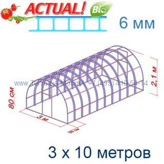 Теплица Богатырь Премиум 3 х 10 с поликарбонатом 6 мм Актуаль BIO