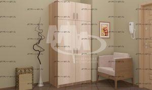 Шкаф распашной 2 двери