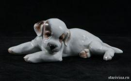 Лежащий щенок. Rosenthal, Германия. 1934-56 гг., артикул 00350