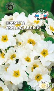 Семена примулы Аккорд белый
