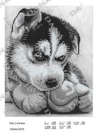 DANA-2375 Dana. Собака с Мячом. А4 (набор 650 рублей)