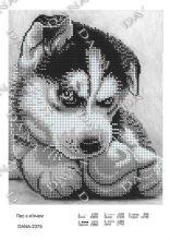 DANA-2375 Dana. Собака с Мячом. А4 (набор 725 рублей)