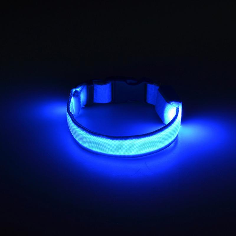 Светящийся Ошейник, Цвет Голубой