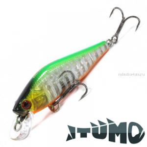 Воблер Itumo Rowdy 60SS 60 мм / 6,7 гр / цвет: 12