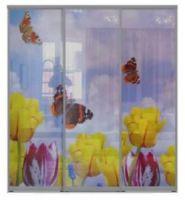 Трехдверные двери купе - Фотопечать, бабочки