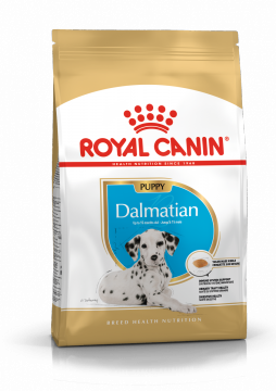 Роял кани Далматин Паппи (Dalmatian Puppy)