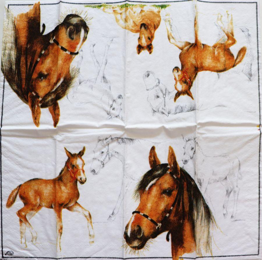 Салфетка бумажная 20*20 Лошади