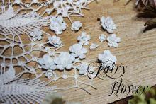 """Цветы """"Пяти цветик белый лесной"""""""