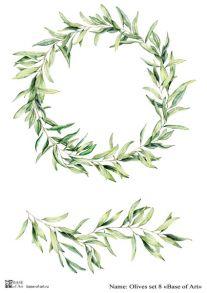 Olives set 8