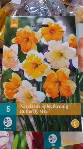 Нарцис spleetkronig butterfly mix