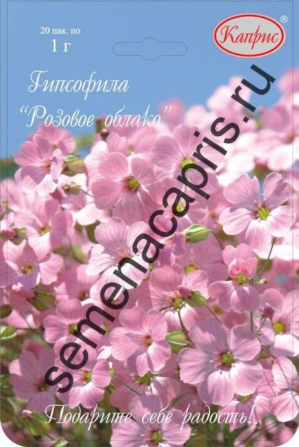 Гипсофила Розовая (Розовое облако) (Каприс)