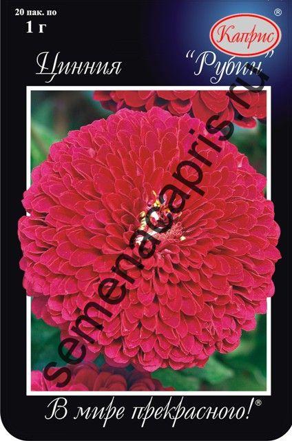 Цинния Рубиново-розовая (Рубин) (Каприс)
