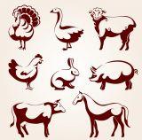 Сельскохозяйственные животные