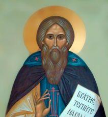 Икона Агапит Маркушевский преподобномученик
