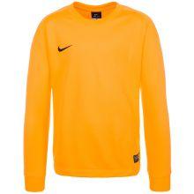 Детский вратарский свитер Nike Park Goalie II Long Sleeve жёлтый