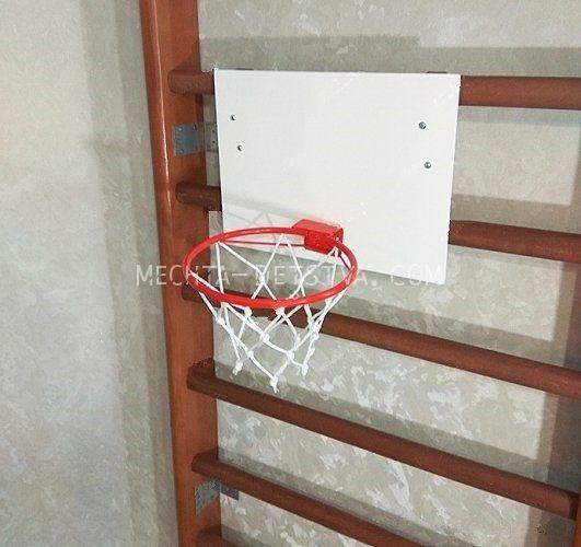 Кольцо баскетбольное с щитом и сеткой