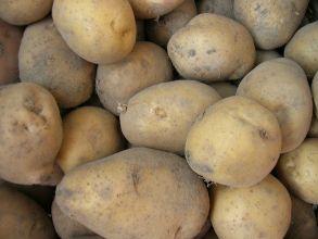 Картофель красный высший сорт