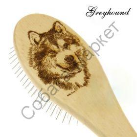 Аляскинский маламут средняя Greyhound by Ashley Craig