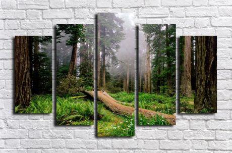 Модульная картина Пейзажи и природа 114