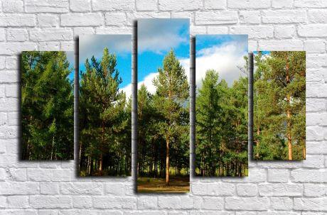 Модульная картина Пейзажи и природа 116
