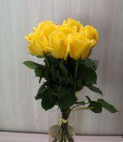 7 роз - Мохана (60 см)