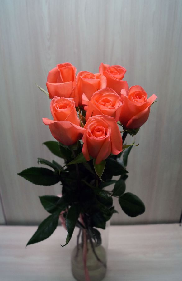 7 роз - Муви Стар (60 см)