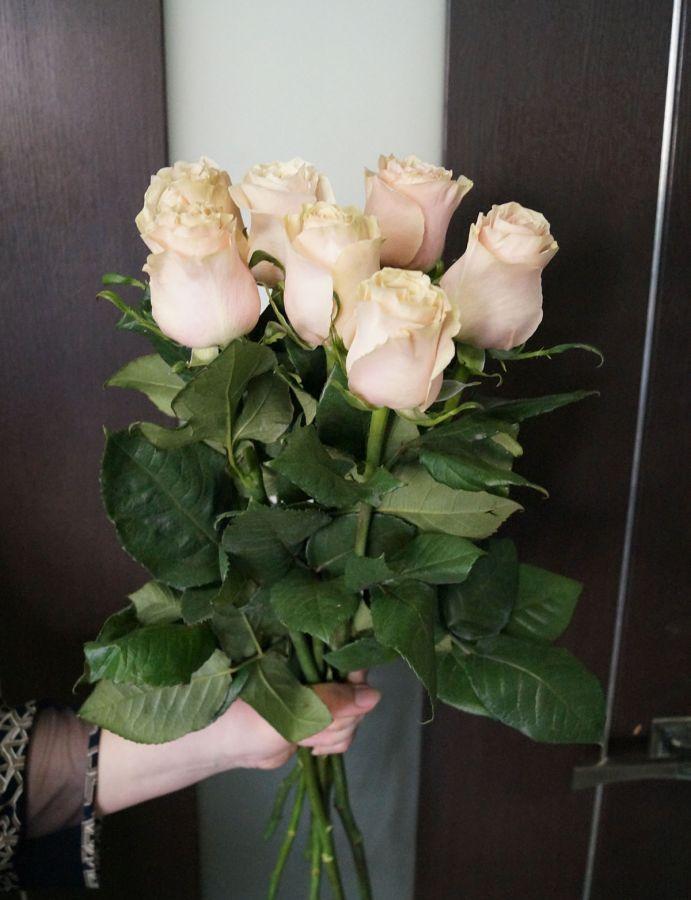 7 роз - Пинк мондиаль (60 см)