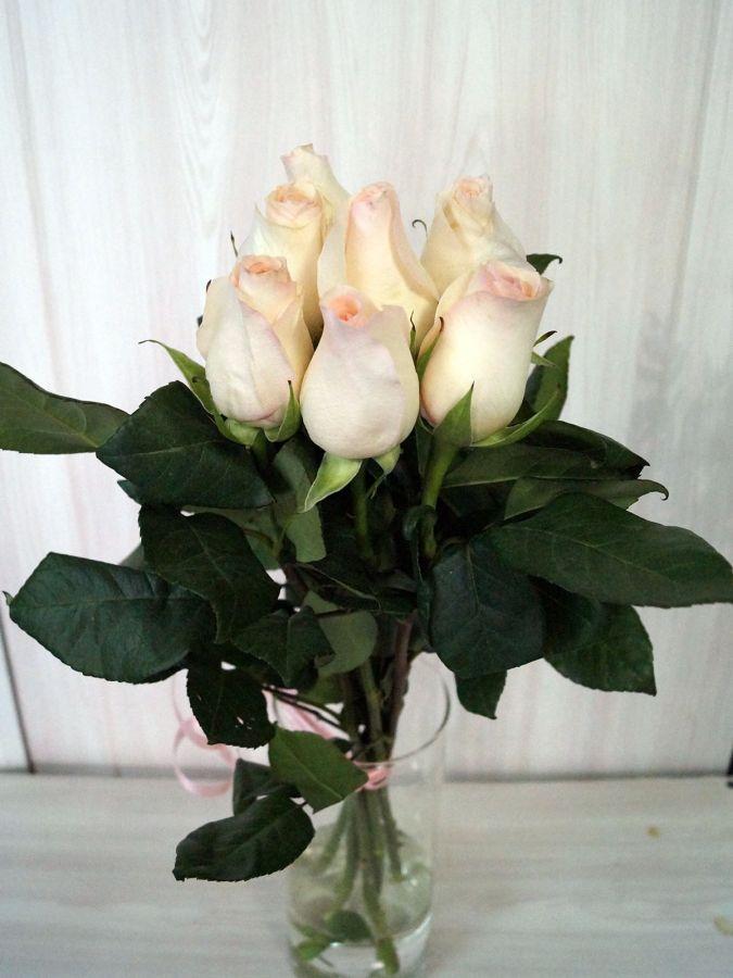 7 роз - Сеньорита (60 см)