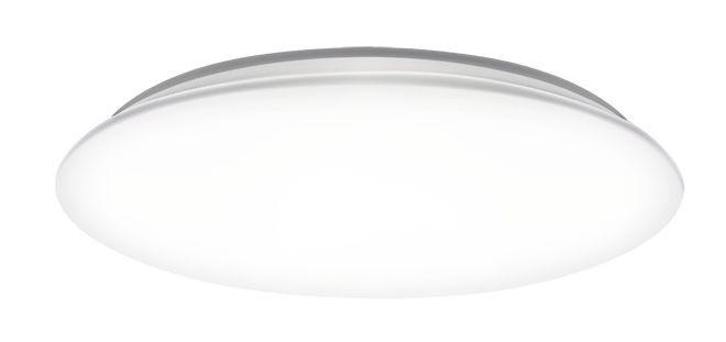 Светильник светодиодный настенно-потолочный PPB OPAL 18w