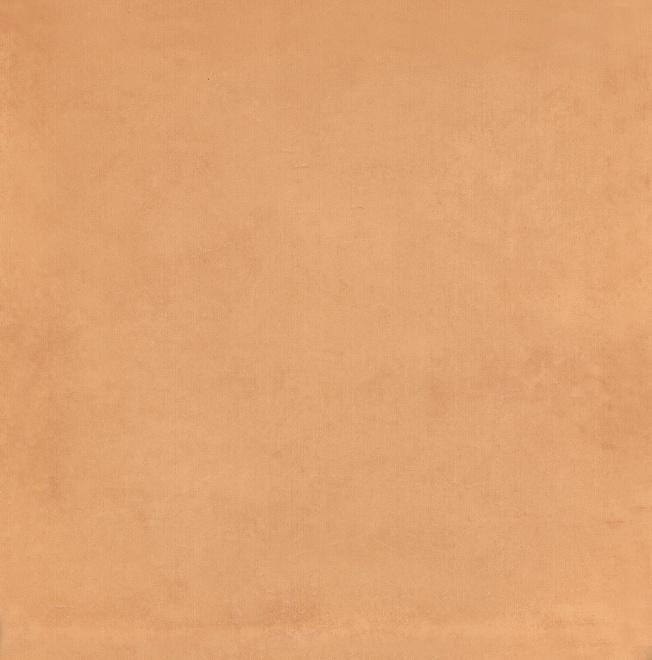 5238   Капри оранжевый