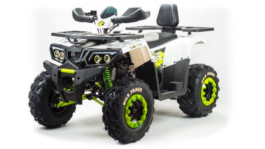 Детский квадроцикл бензиновый Motoland Wild Truck Lux 200