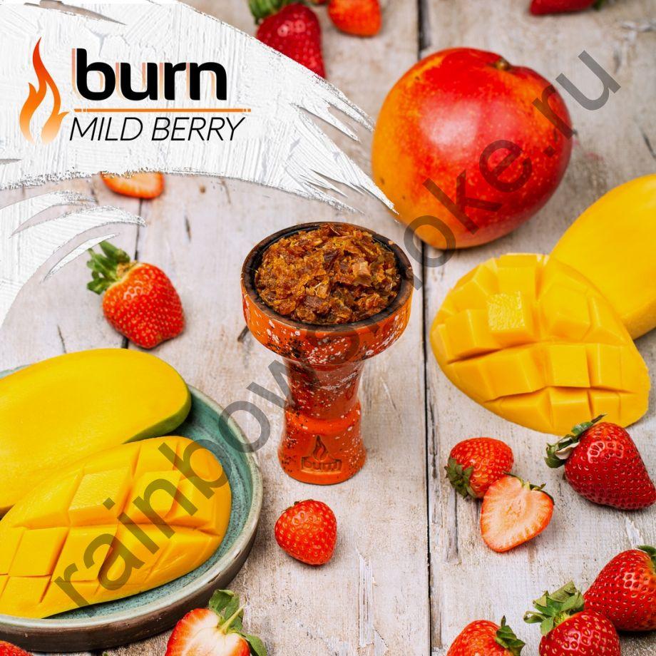 Burn 100 гр - Mild Berry (Милд Бэрри)