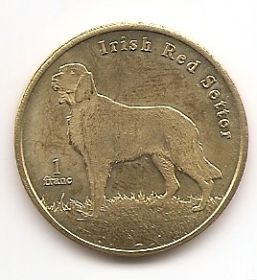 Ирландский красный сеттер 1 франк Сен-Бартелеми 2020