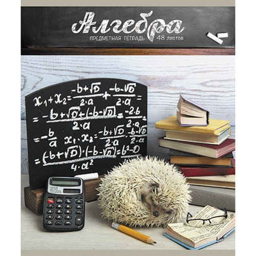 Тетрадь предметная Алгебра 48л Тайная жизнь ежей
