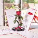 """Букет красных роз в колбе 33 см """"Standart"""""""