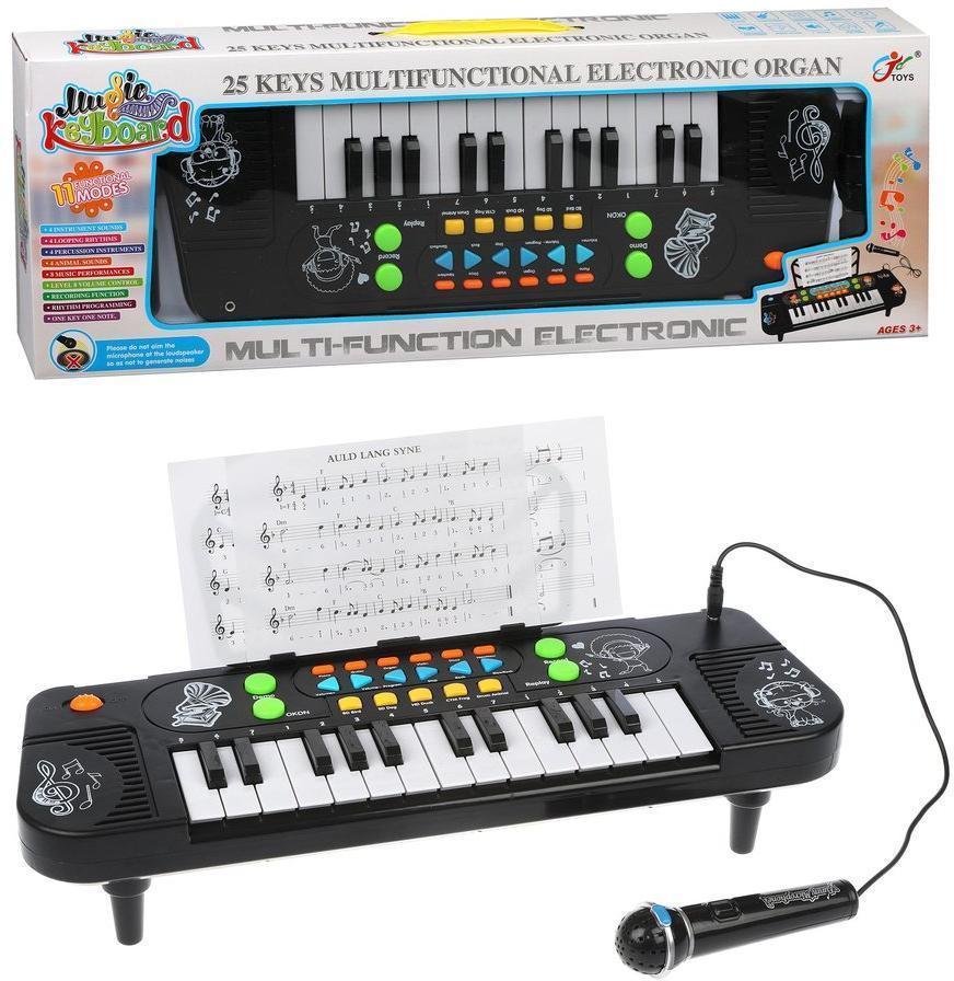 Синтезатор эл., 25 клавиш, запись, микрофон, эл.пит. АА*3 не вх.в комплект