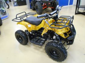 ATV Mini Grizlik X-16 1000W