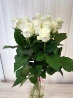 11 белых роз (60 см)