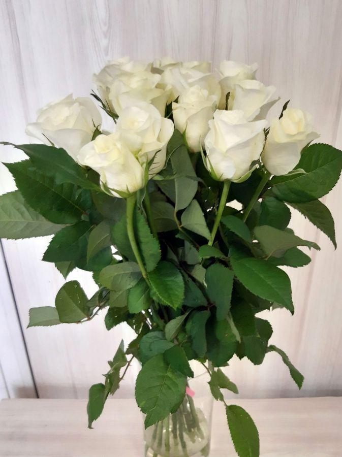 15 белых роз (60 см)