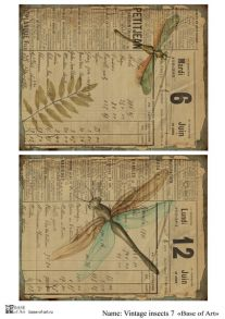 Vintage insects 7