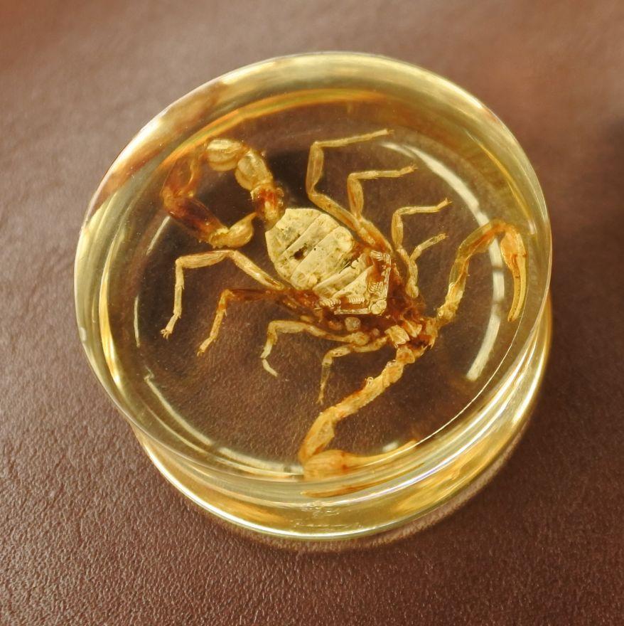Плаги - скорпион