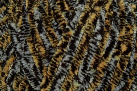 DOLPHIN ANIMAL COLORS Цвет 83108