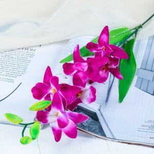 """Цветы искусственные """"Бело-фиолетовая орхидея Гуарианте"""""""