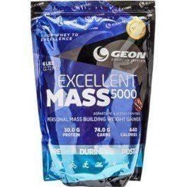 GEON EXCELLENT MASS 5000 2,7 КГ