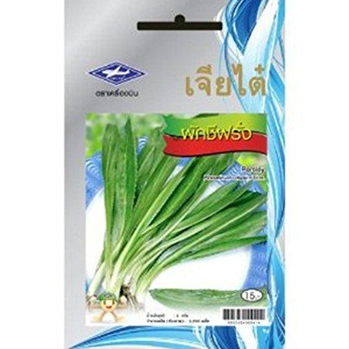 Тайские семена Эрингиум пахучий 10 гр