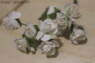 Розы белые (5 шт)