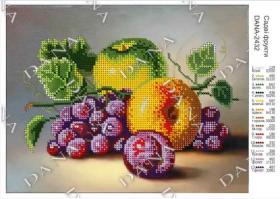 Dana DANA-2432. Садовые Фрукты схема для вышивки бисером купить оптом в магазине Золотая Игла