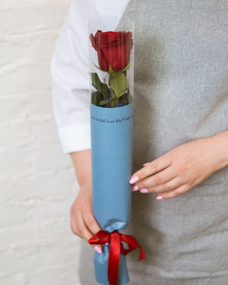 Роза Эквадор в упаковке